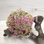 Seed Posy - Pink